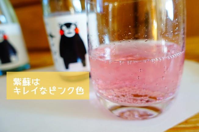 くまもんサイダーサイダー 紫蘇はキレイなピンク色