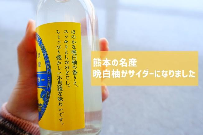晩白柚(ばんぺいゆ)サイダー 熊本名産の晩白柚