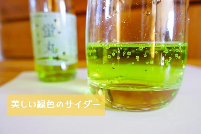 阿蘇神社復興支援蛍丸サイダー 美しい緑色